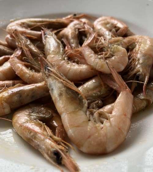 Restaurant Xaloc gamba Tarragona